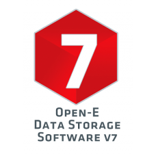 DSS V7 (Data Storage Software) 4TB